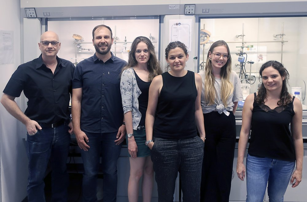 Team members of the Institute of Materials Chemistry